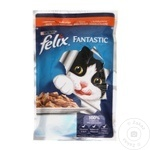Hrana pentru pisici Felix Curcan 100g