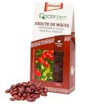 Ceai Doctor Farm Fructe de masces 100g