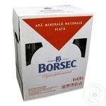 Apa minerala necarbogazoasa Borsec sticla 6x0,75l