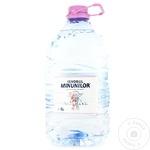 Минеральная негазированная вода Izvorul Minunilor ПЭТ 5л