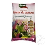 Substrat plante camera Torfland 10l