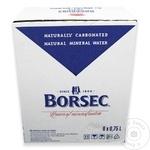 Apa minerala carbogazoasa Borsec 6x0,75l