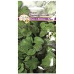 Seminte de plante aromatice EURO