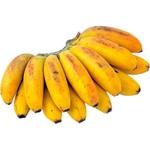 Banane Baby
