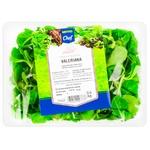 Salata Valeriana METRO Chef 100g