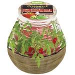 Lumânare borcan Bolsius diverse arome