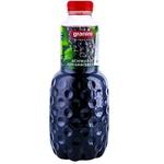 Nectar Granini coacăză neagră 1l