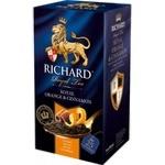 Чай Richard апельсин&корица 25пак x2г