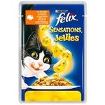 Hrana pentru pisici Felix spanac/curcan 100g