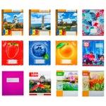 Caiet linie Color 24 file